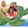 Intex Sea Turtle Ride-On product image