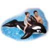 Shamu Whale Ride-On product image