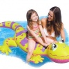 Gecko Ride-On product image