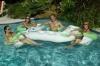 Ahh Aqua Bar, In Pool Bar