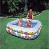 Intex Sun Shade Pool product image