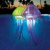 Ocean Art Light Up Jellyfish product image