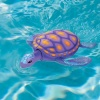 Rainbow Reef Turtles, Pool Games product image