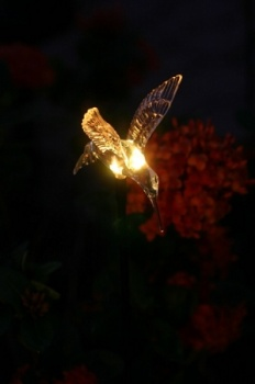 Pixilights Multi Coloured Solar Garden Lights x2, Solar Hummingbird Lights