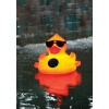 Solar Light Up Duck, Pool Chlorinator