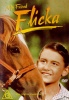 My Friend Flicka DVD